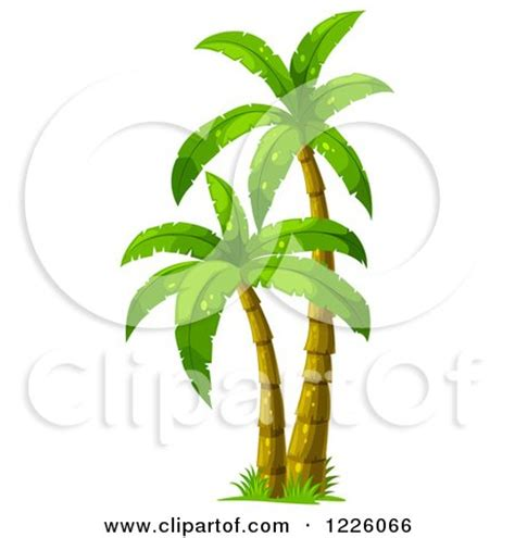 Thesis palm fund